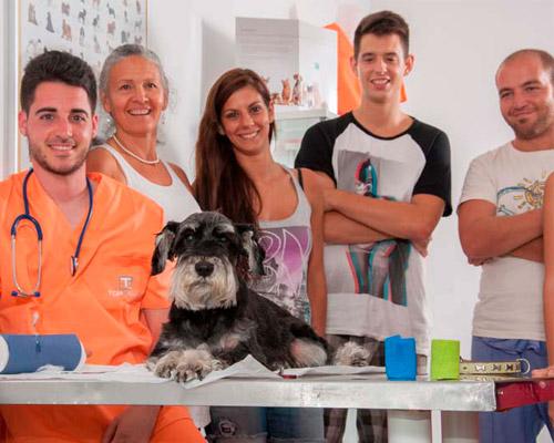 Prácticas Curso Auxiliar Ténico Veterinario - TOP aul@ Online